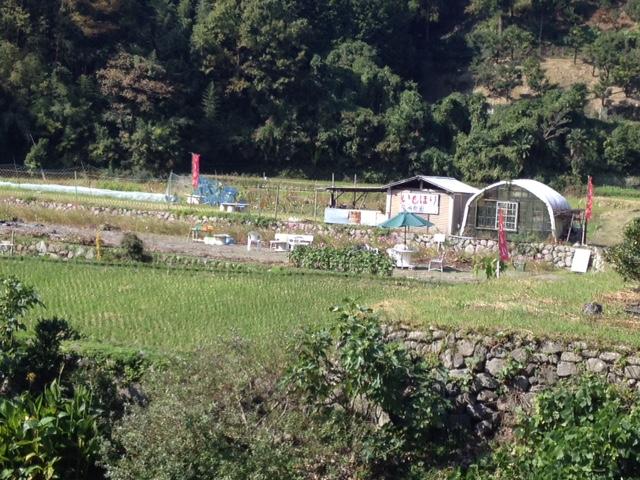 イモ掘り2014 (1).JPG