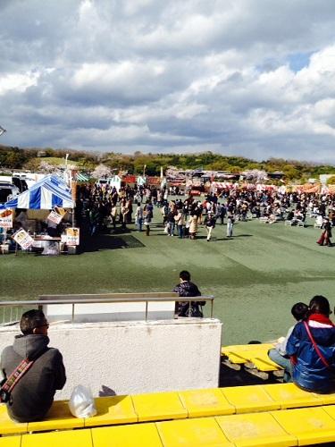 4月6日 万博公園 (3).JPG